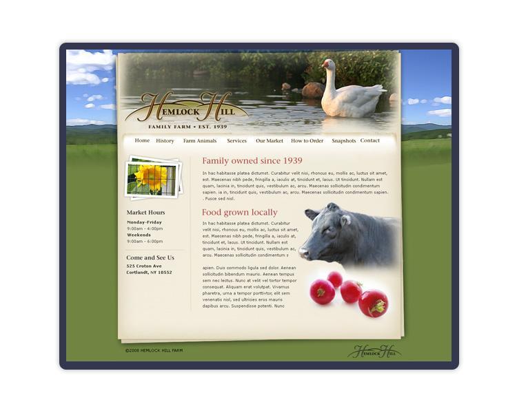 local business website design st augustine